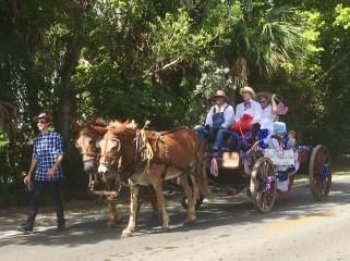 Baileys horses