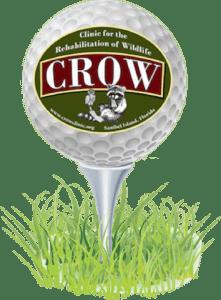 Crow classic 2019
