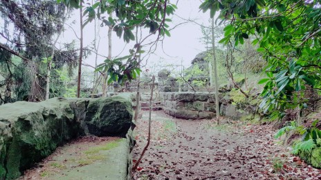 Die verwunschene Ruine