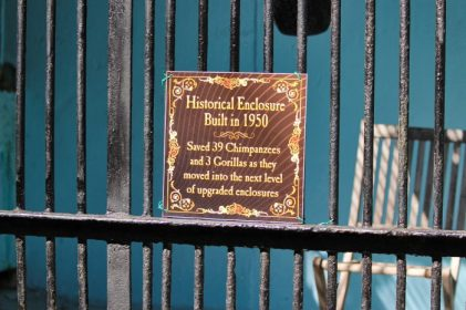 SPS - Historical cage