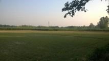 Fields & Farms