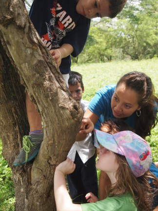 Teacher Ana showing Los Tigres how insects camouflage themselves