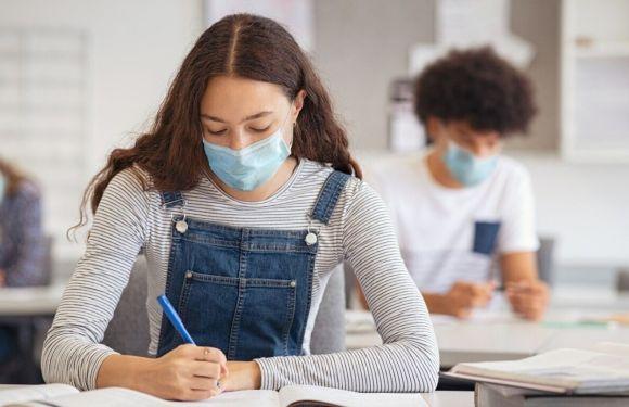 La nueva: Licencia por día menstrual para estudiantes