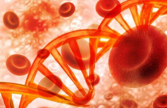 La mutación genética que provoca colesterol alto y es una de las enfermedades hereditarias más comunes en el mundo