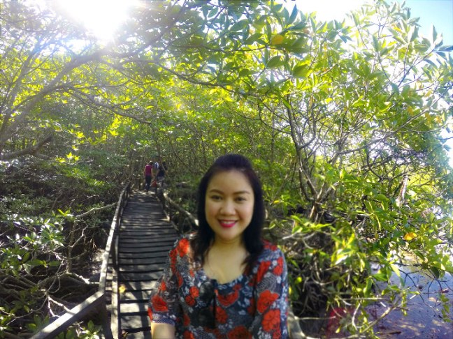 15 Mindro Mangrove