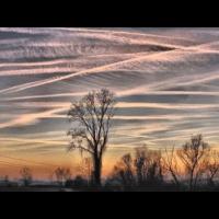 ACHTUNG AN ALLE ! ZENSUR TUBE MAG DIESES VIDEO NICHT ! HELFT ES ZU VERBREITEN ! Auswirkungen von Chemtrails...!