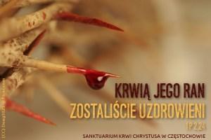 Nowenna do Krwi Chrystusa @ Cały Świat