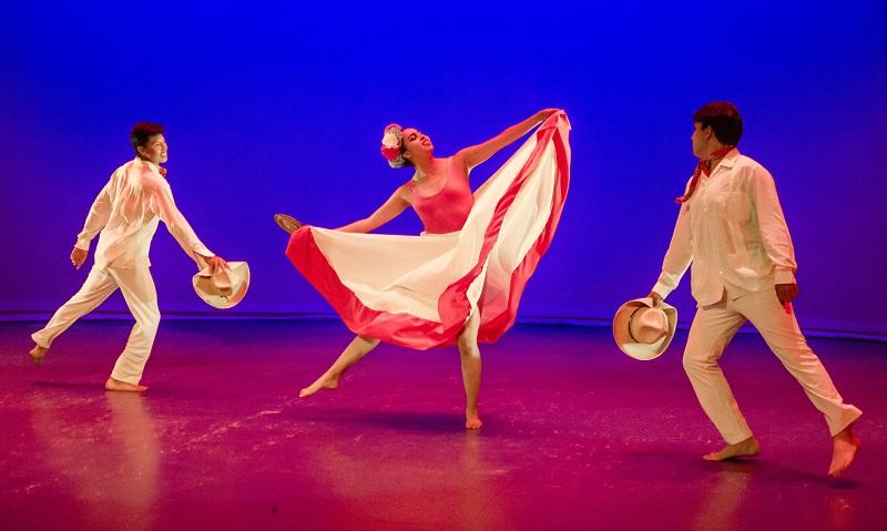 Programas digitales de danza para todas las edades en el IPBA