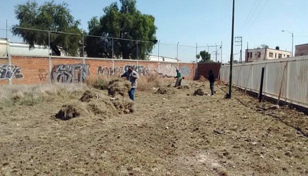 Impulsa Ayuntamiento Reforestación y Rescate de Áreas Verdes