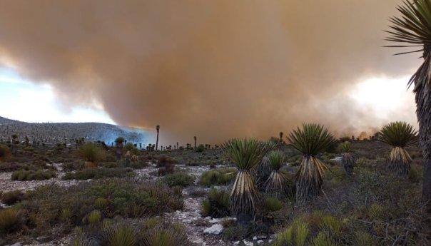 Controlado al 50 por ciento incendio en el milagro en Guadalcázar