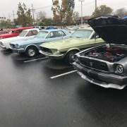 Motors 4 Music Charity Car Show
