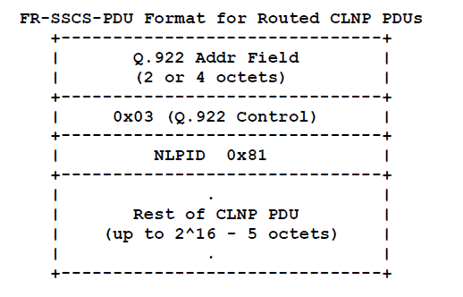 Routed CLNP PDUs
