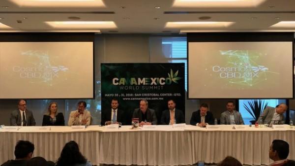 (Photo: CannaMexico)