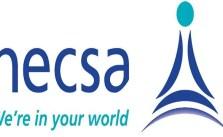 NECSA Internship Opportunity 2022 Is Open