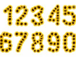 Слънчево число