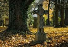 Какво означават сънищата за мъртъвци