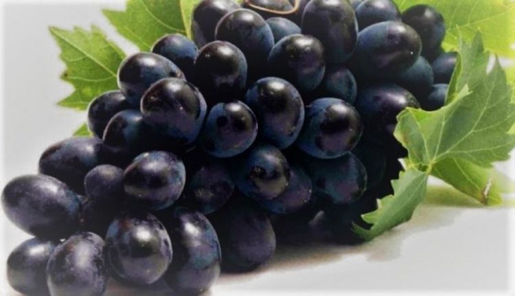8 Alimentos Que Son Perfectos Para Un Páncreas Saludable 6