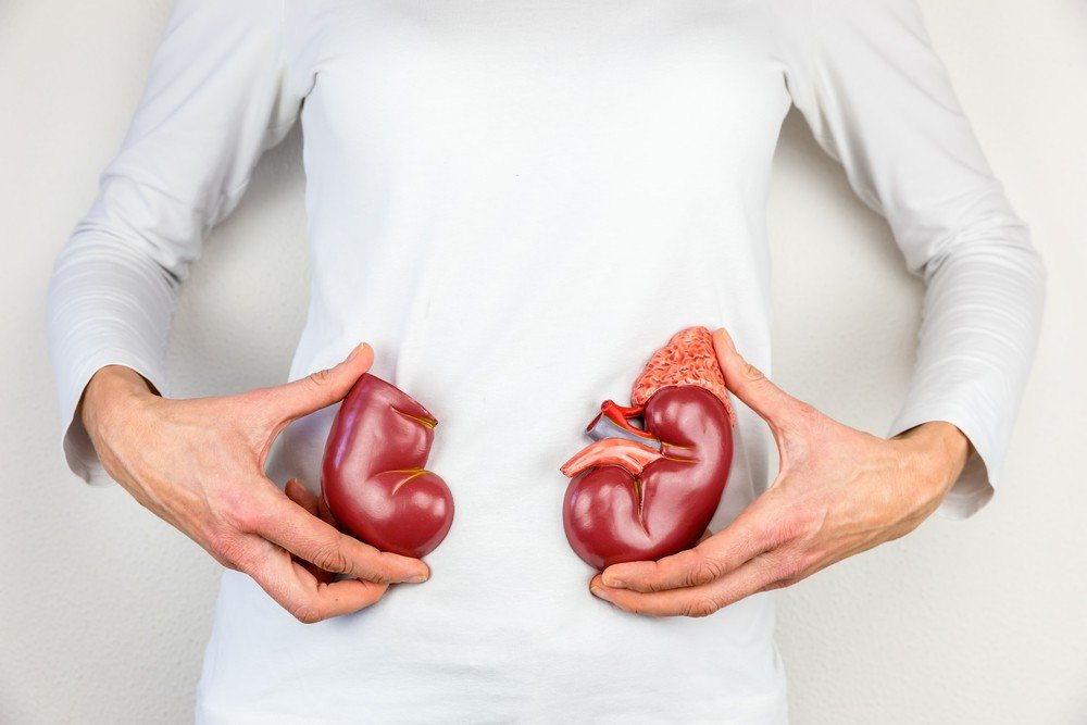 8 Alimentos Que Debe Evitar Para Prevenir Daño En Tus Riñones 1