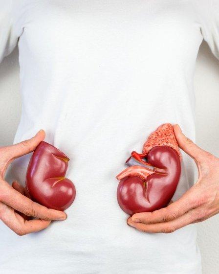 8 Alimentos Que Debe Evitar Para Prevenir Daño En Tus Riñones 19