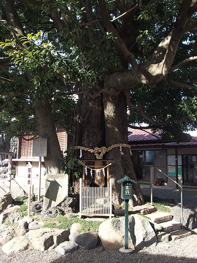嶺白山神社写真