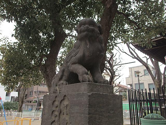 矢口氷川神社写真