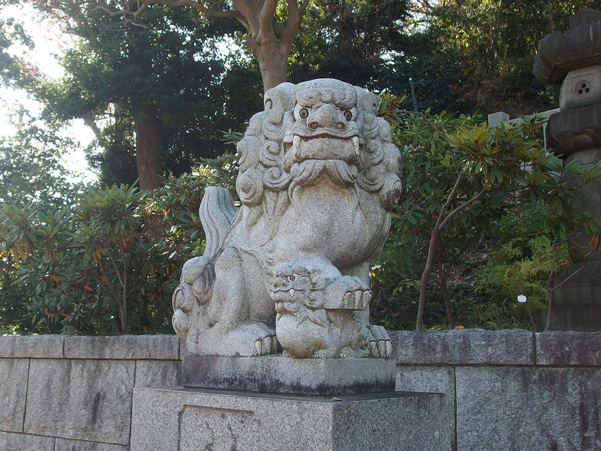 樽町杉山神社写真
