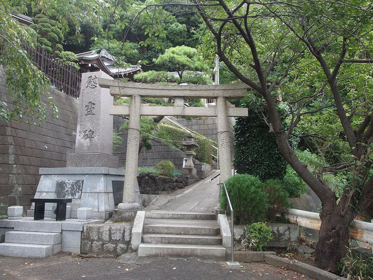 日吉熊野神社写真