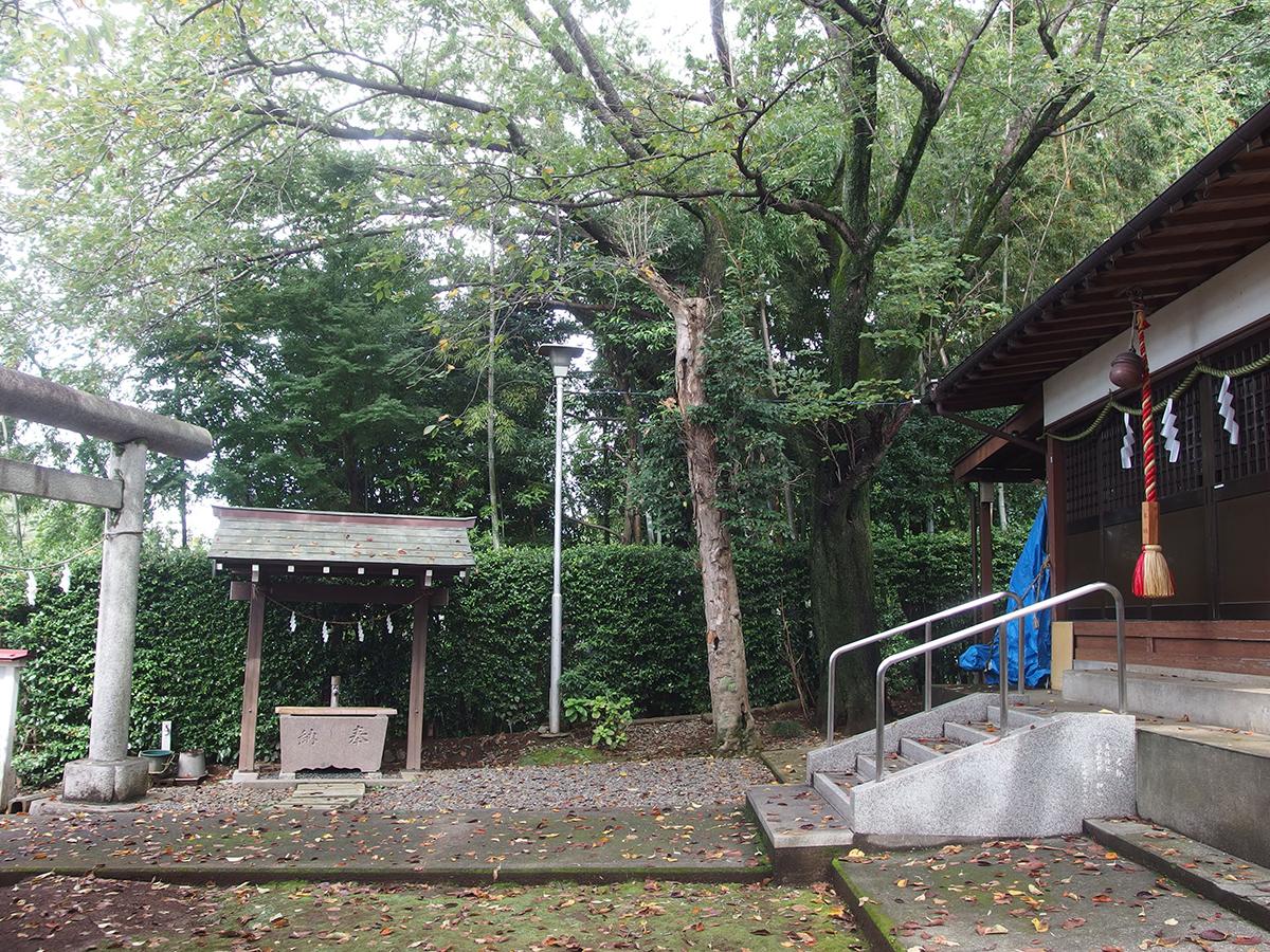 町谷八坂神社写真