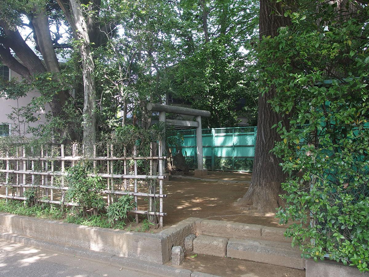 稲荷神社(渋谷区笹塚1)写真