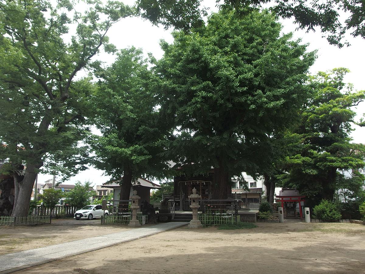 八幡橋八幡神社(横浜市磯子区原町)写真