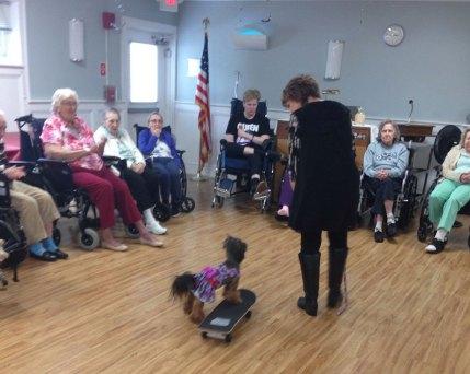 Nursing Home Week 2019 - dog therapy - 2