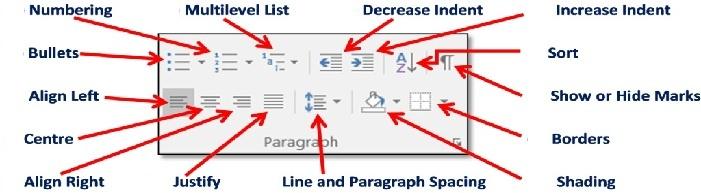 paragraph tools