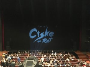 Musical Ciske de rat happy moments