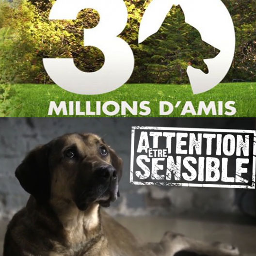 30-millions-campagne