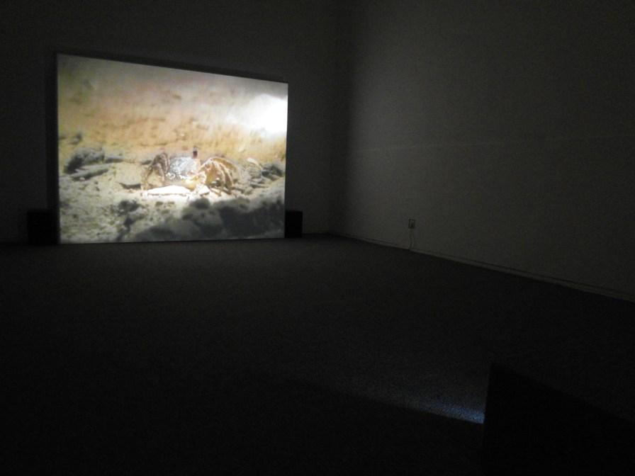 Sala_Galerie-1