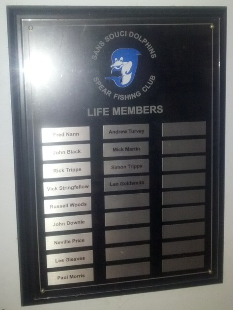 Dolphins Life Members