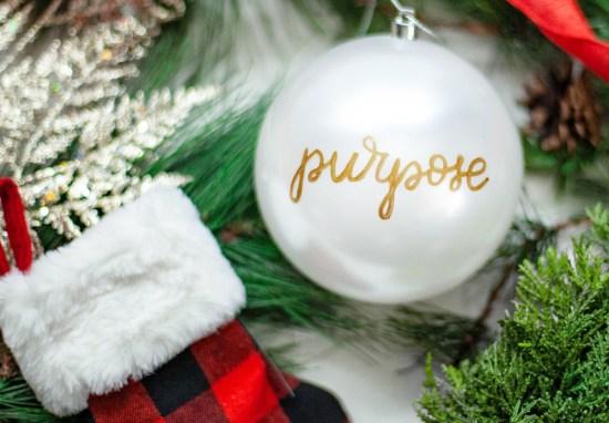 December 4 – Purpose