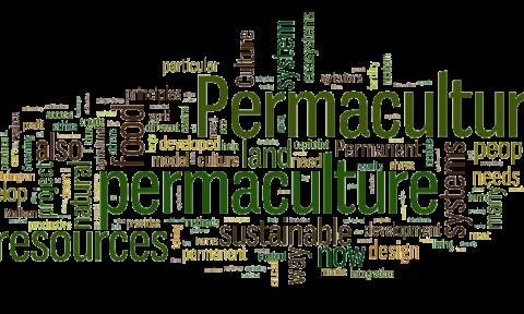 permaculture bioregional wordle