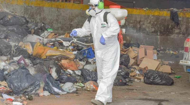 Continúa plan de fumigación para combatir la plaga de moscas