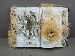 Origins by Belinda Edwards