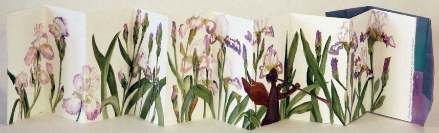Iris by Barbara Parke Wolff