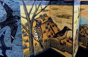 New Mexico Birds by Lynn Grimes