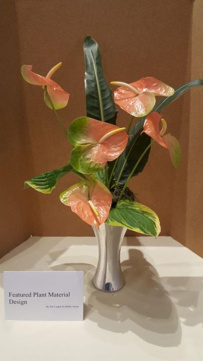 Pale pink anthuriums rise in a vertical arrangement from a silver base punctuated by three long and narrow forest green leaf spears.