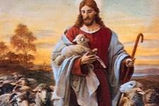 Dia 17 - Escolher Jesus, o Verdadeiro e Bom Pastor, Para Segui-Lo