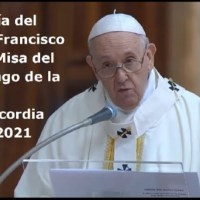 Homilía del Papa Francisco en el domingo de la Divina Misericordia