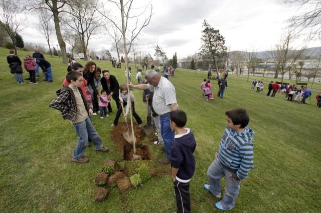 Santander celebrará el Día de los Bosques con la plantación de árboles en colegios del municipio