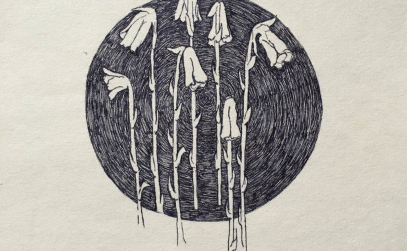 Folk Revival Ft. Jeremy Summer, Soul Zimon & His Kozmic Combinations