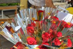 El buen tiempo no ha estropeado las rosas // Elisenda Colell