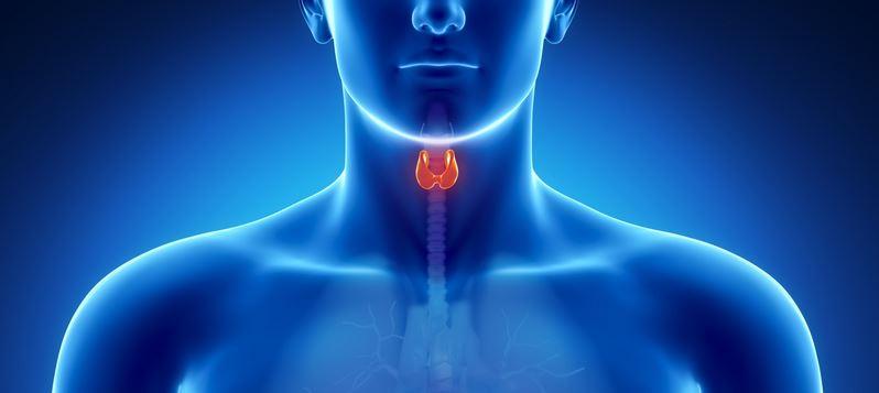 Causes et signes cliniques de l'hypothyroïdie