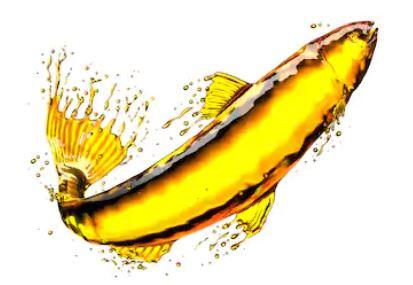 L'huile de foie morue : le remède oublié
